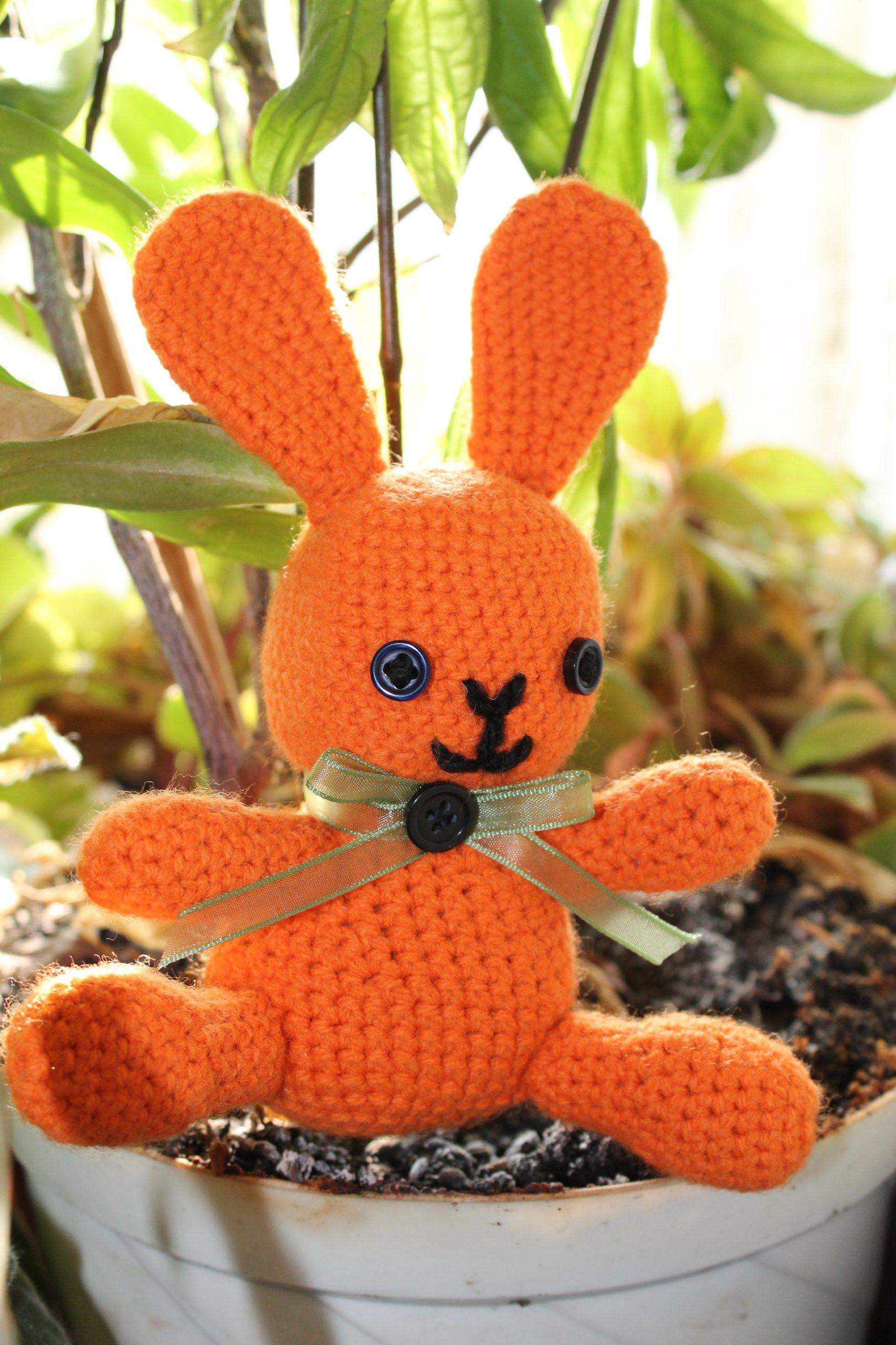Iepuras portocaliu